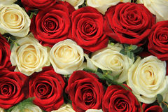 Red and white roses in a wedding arrangement. Red and whte roses in a wedding centerpiece Royalty Free Stock Photo