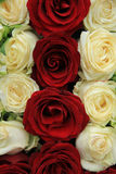 Red and white roses in a wedding arrangement. Red and whte roses in a wedding centerpiece Stock Photography
