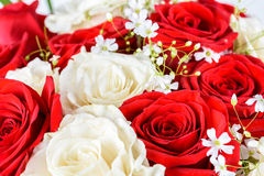 Red And White Roses Wedding Bouquet. Red And White Roses Wedding Flowers Bouquet Royalty Free Stock Images