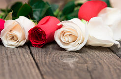 Red and white roses on wooden background. Women' s day, Valentin. Es Day, Mothers day. Copy space, selective focus. Natural optical blur stock image