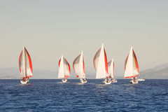 Red and white sails. Regatta taking place in the Black Sea off the coast of Turkey Royalty Free Stock Photography