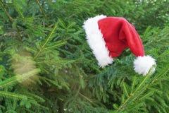 Santa hat on the fir tree royalty free stock image
