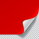 Red and white sheet of paper with curved corner Royalty Free Stock Photos