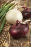 Red and white 'sweet' onions Royalty Free Stock Image