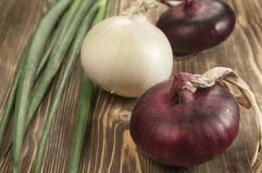 Red and white 'sweet' onions Stock Photo