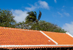 Red and White Tile Roof in Tropics Royalty Free Stock Photos