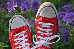 Red and white trainers