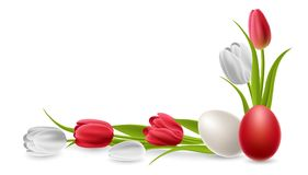 Red and white tulip flower with Easter egg. S, forming a corner border decoration. Realistic vector illustration for spring and Easter design, isolated on white Stock Photo