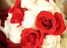 Red and White Wedding Boquet Royalty Free Stock Photo