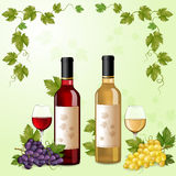 Red and white wine bottles Royalty Free Stock Photos