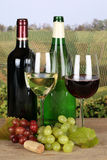 Red and white wine in bottles Royalty Free Stock Image