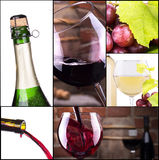 Red and white wine with champagne collage Stock Image