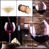 Red and white wine with champagne collage Royalty Free Stock Images