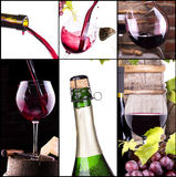 Red and white wine with champagne collage Royalty Free Stock Photography
