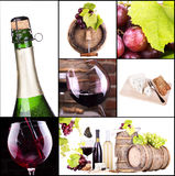 Red and white wine with champagne collage Royalty Free Stock Photo