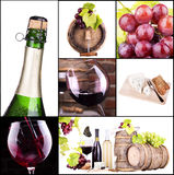 Red and white wine with champagne collage Stock Images