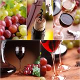Red and white wine collage. Made from five photography royalty free stock image