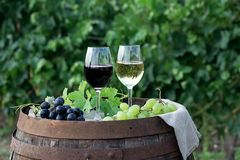 Red and white wine with grapes in nature. Glasses of red and white wine with grapes on the barrel stock photo