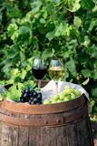 Red and white wine with grapes in nature Royalty Free Stock Photo