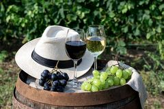 Red and white wine with grapes in nature. Glasses of red and white wine with grapes on the barrel with a hat stock photography