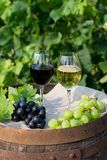 Red and white wine with grapes in nature. Glasses of red and white wine with grapes on the barrel. Selective focus on the grapes royalty free stock images