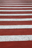 Red-white zebra of the crosswalk Royalty Free Stock Photo