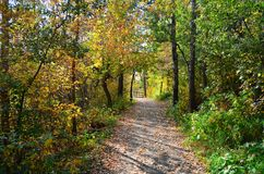 Red Willow Trail Park Network, St Albert, Western Canada. Red Willow Trail walking path in picturesque St Saint  Albert, Alberta, Western Canada Prairies prairie Royalty Free Stock Photos