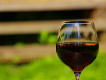 Red wine. Crystal glass of wine. Green background Stock Images