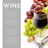 Red wine. Royalty Free Stock Photos