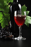 Red wine. Wine composition: vine and bottle of wine Royalty Free Stock Photography