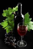 Red wine. Wine composition: vine and bottle of wine Stock Photo