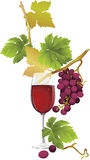 Red Wine. All elements and textures are individual objects. Vector illustration scale to any size Stock Photos