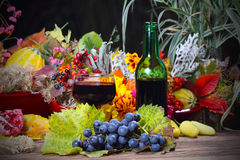 Red wine in the autumn evening. In garden Royalty Free Stock Photo