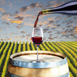 Red Wine on Barrel Stock Photo