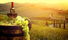Red wine with barrel on vineyard in green Tuscany, Italy.  stock image