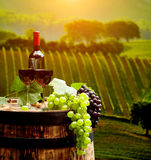 Red wine with barrel on vineyard in green Tuscany, Royalty Free Stock Images