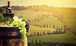 Red wine with barrel on vineyard in green Tuscany Stock Image