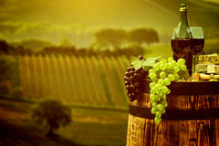 Red wine with barrel on vineyard in green Tuscany Royalty Free Stock Photography