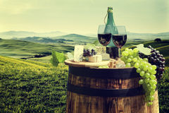 Red wine with barrel on vineyard in green Tuscany Stock Photography