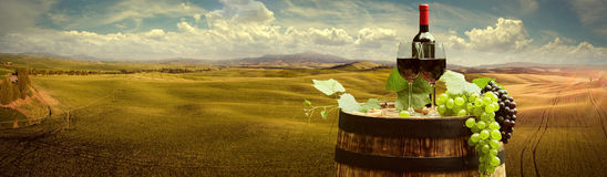 Red wine with barrel on vineyard in green Tuscany, Italy.  royalty free stock images
