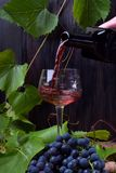 Red wine is being poured into the glass. A bunch of grapes next to it royalty free stock photography