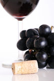 Red wine and blue grapes. A cork in front of some blue grapes and a glass of wine stock images