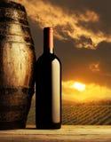 Red wine bottle. And wodden barrel, vineyard on background Stock Images