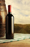 Red wine bottle. And wodden barrel, vineyard on background Royalty Free Stock Photos