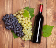 Red wine bottle and bunch of grapes Royalty Free Stock Photo