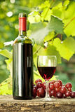 Red wine bottle, glass and bunch of grapes. Red wine bottle, one glass and bunch of grapes on old wooden table against vineyard in summer Royalty Free Stock Photos