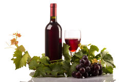 Red wine bottle and glass with grapes and leaves on white background. Studio shot of red wine bottle and glass isolated on white background with leaves and Royalty Free Stock Photos