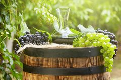 Red wine bottle and wine glass on wodden barrel. Beautiful Tuscany background.  royalty free stock photos