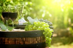 Red wine bottle and wine glass on wodden barrel. Beautiful Tuscany background.  stock photo