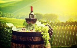 Red wine bottle and wine glass on wodden barrel. Beautiful Tuscany background stock photography